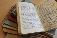 Manfred Bietak's excavation diaries.