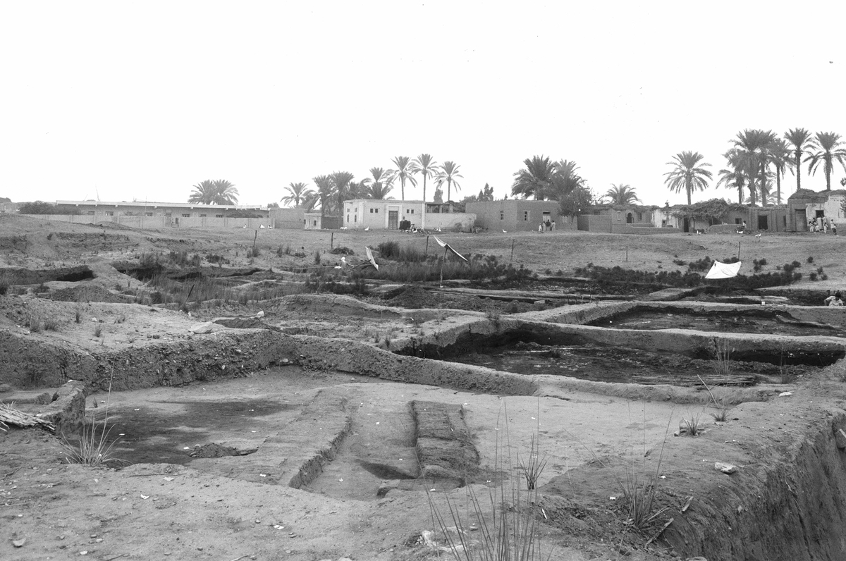 Excavations in area A/II in the year 1980 with the village of Tell el-Daba in the background (M. Bietak, © copyright ÖAI/OREA archive).